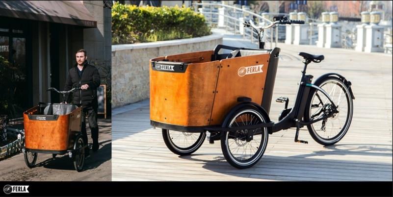 Ferla Delivery Bike